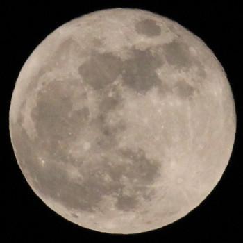 Moon4_crop