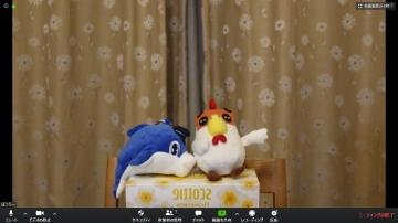 Webcam_g5x